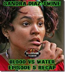 SandraDiazTwineBvWRecap