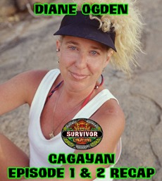 DianeOgdenCagayanRecap