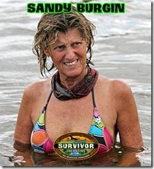 SandyBurginWebCard