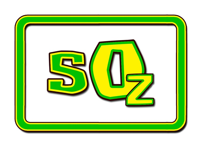 Survivor logo 12 copy