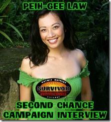 PeihGeeLawSecondChanceCampaignWebCard