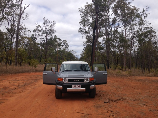 A 4WD is essential to reach the Survivor campsites, especially the Princess Hills camping area in Girringun National Park.