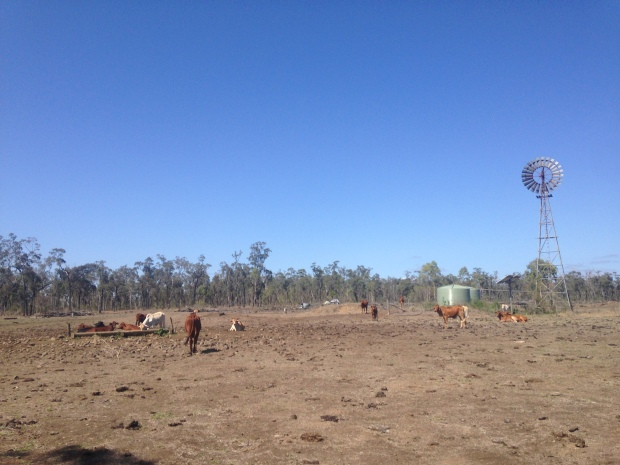 The Goshen Station Cattle Ranch, a 48,000 acre property between Townsville and Cairns where the second season was filmed